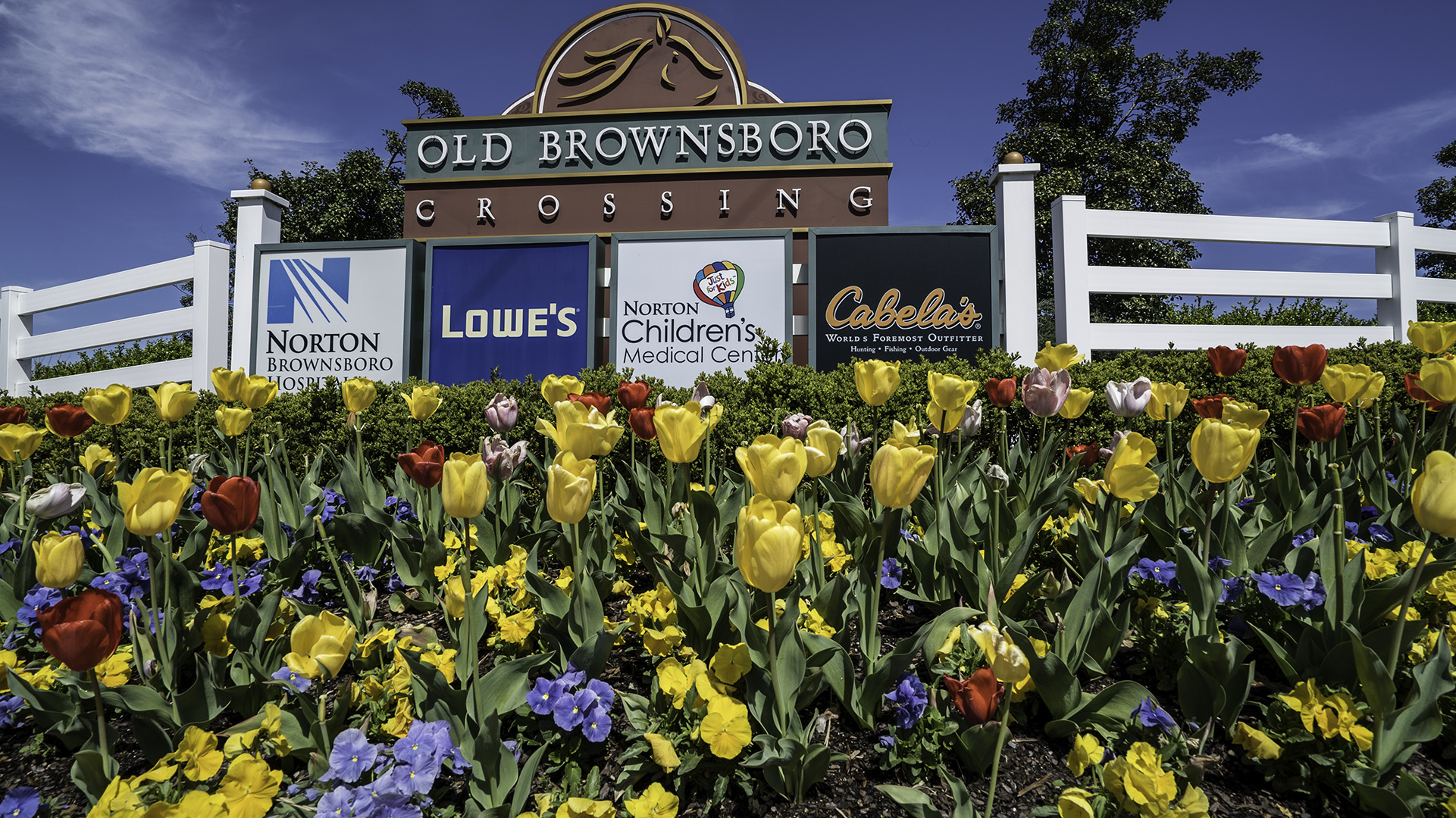 Earthbound_Brownsboro-Crossing_Tulips